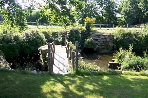 Scaramanga garden design sussex kent surrey london for Garden design kent